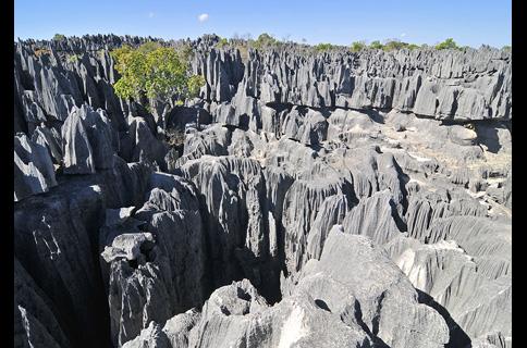 ツィンギ・デ・ベマラ厳正自然保護区の画像 p1_14